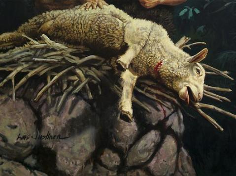 SACRIFÍCIO - cordeiro morto